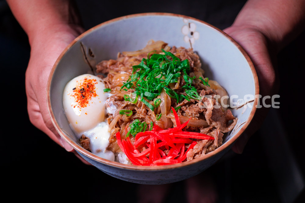 Gyudon (Japanese Beef & Onion Rice Bowl) - Ice Or Rice