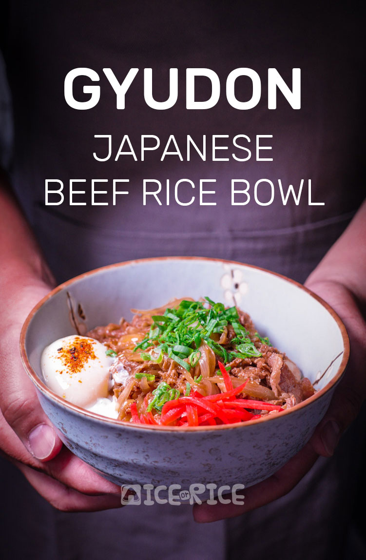 how to make japanese pork rice bowl